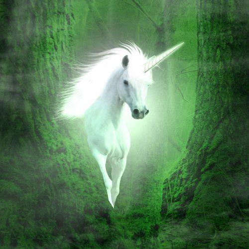 Unicorn Square